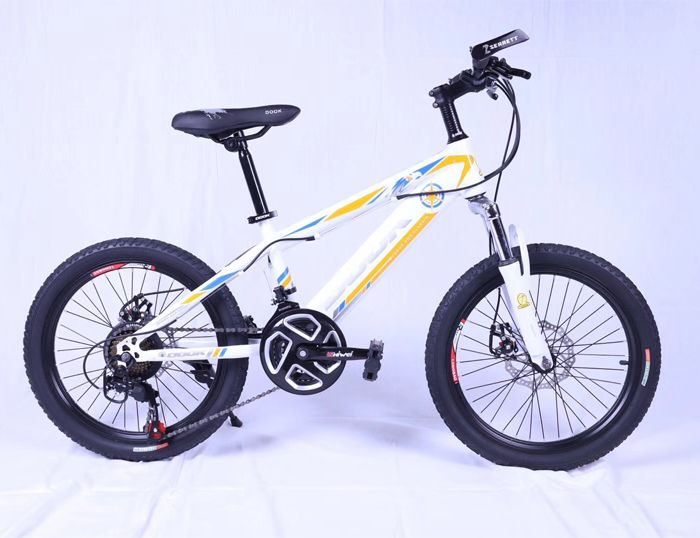 20inch mountain bike Lightening
